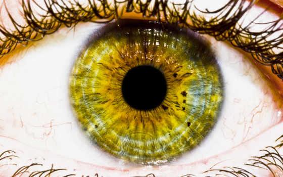 людей, свет, люди, глаз, глазами, день,