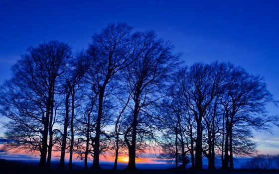 crepuscolo, cielo, сер, sua, сэра, ano, вида, tramonto, curar, alberi,