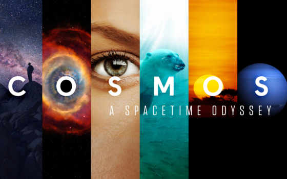 cosmos, космос, time, odyssey, spacetime, like,