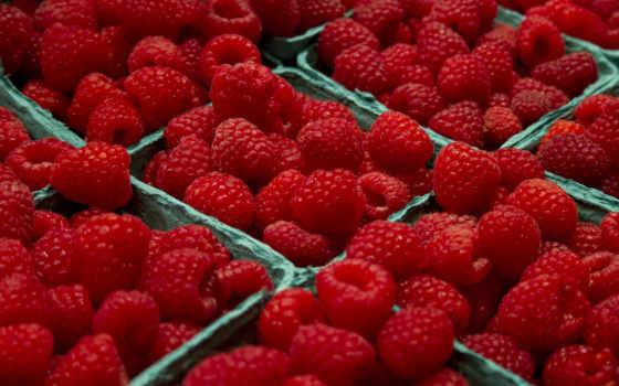 малина, еда, картинка, summer, ягоды, торты, candy, малины,