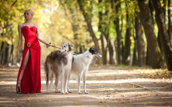 платье, красном, девушка, двумя, собаками, борзыми,