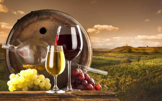 вино, белое, красное, виноград, бокалы, бочки, oblaka, vineyard, вина,