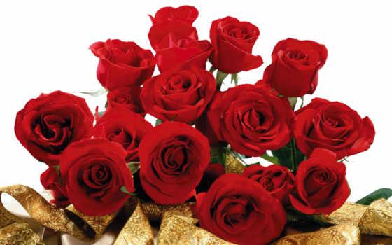 розы, букет, роз, красивые, cvety, част, марта, цветов,