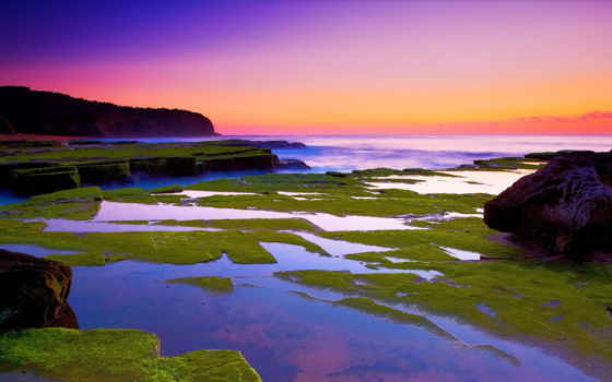 природа, море отмель