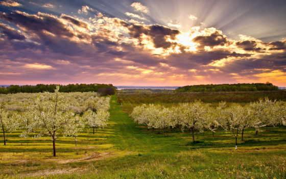 primavera, papel, paisagem, parede, pantalla, fondo, jardim, fondos, paisaje, jardín, foto,