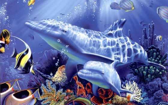 дельфины, рисованные, zhivotnye, картинка, под, семья, дельфинов, рисунок, водой,