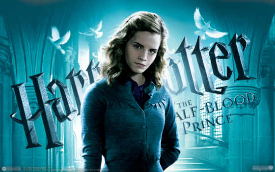 гарри, поттер, hermione