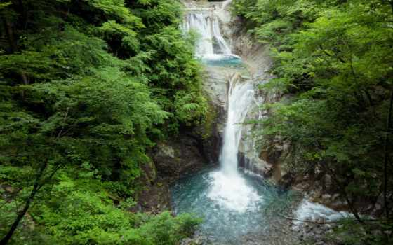 waterfalls, взгляд, июл, тортик, our, детёныш, прирола, kangaroo,