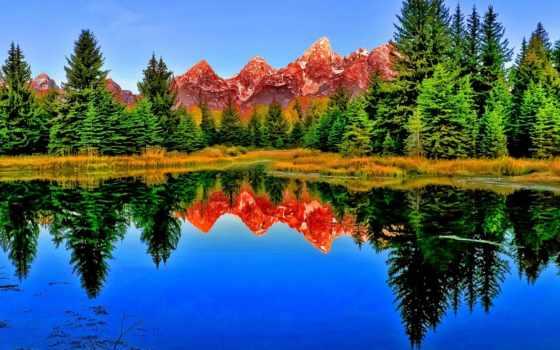 озеро, лес, отражение, mist, остров, mobile, планшетный, телефон, ноутбук,