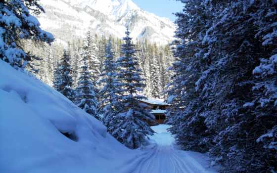 горы, снег, winter