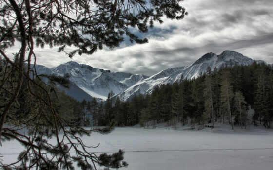 лес, горы, снег