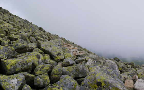 горы, камни, tatra, небо, мох, камень, озеро, моховые, электричек, график,