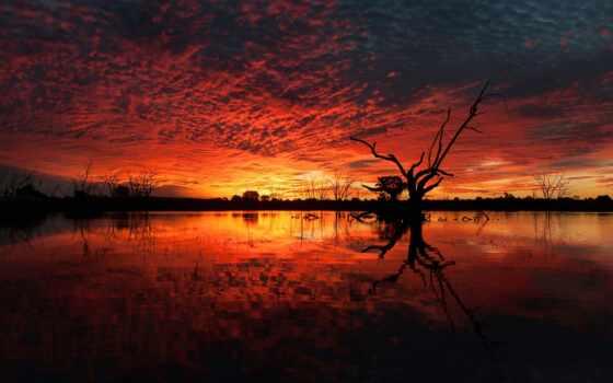 zakat, небо, priroda, voda, дерево, пейзаж, темный, ozero, razmyshlenie, красный, лучик
