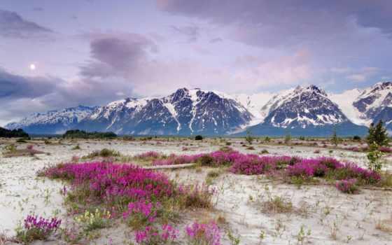 природа, природы, аляски