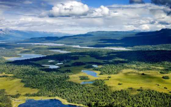 park, national, denali, аляска, preserve, лес, alpine, lakes,