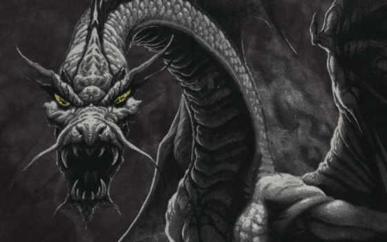 дракон, дракона, tmy, one, стоковое, fantasy,