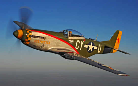mustang, gunfighter, polet, flyinggoober, caf, was, самолет, сила, air, commemorative,