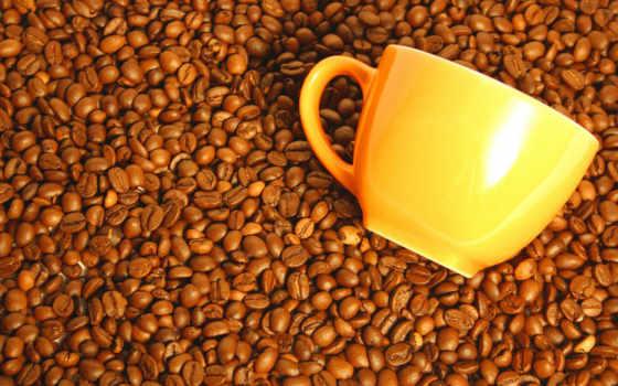 кафе, grãos, parede