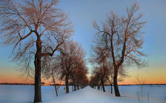 winter, ottawa, дорога