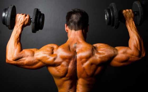 тренировки, тренировочный, тренировок, упражнения, накачать, мужской, тренировке, спорт, после, мышцы, домашних,
