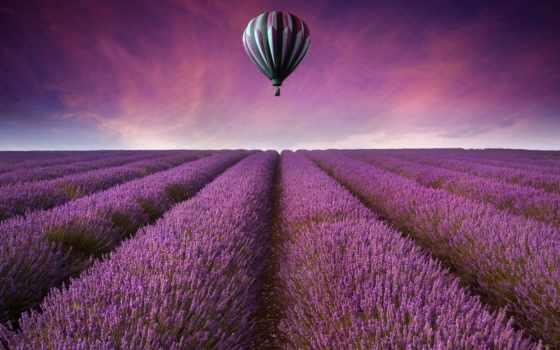 lavender, поле, природа, landscape, страница, рисунки, мяч, aerial,