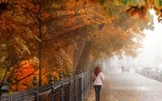 девушка, тротуар, петербург, санкт, осень