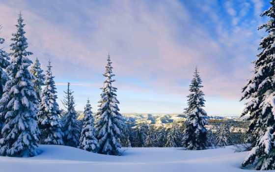 winter, снег, eli, небо, oblaka, вечер,