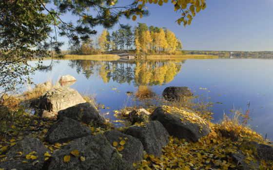 duvar, kağıtları, sonbahar, sahil, arka, taşlar, ada, ağaçlar, gül, görüntüleri, vektör,