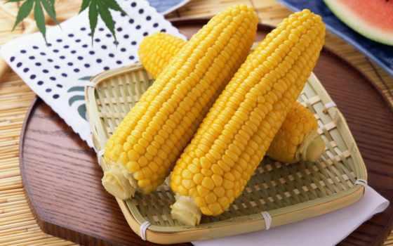 corn, вареная, кукурузу, кукурудза, кукурузы, кухне, cook, правильно,