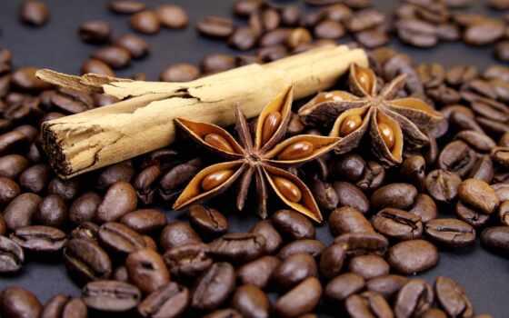 coffee, seed, cinnamon, cup, растровый, клипарт, фон, max, фартук, арта