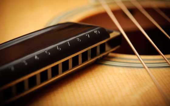 гитара, гармошка, губная