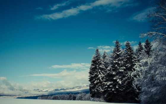 мрачные, ipad, winter, спуск, pack, коллекция, деревья, взгляд,
