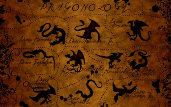 драконы, дракон, красивые, map,