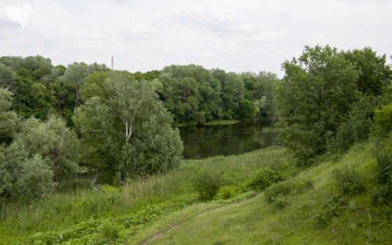 луг, река