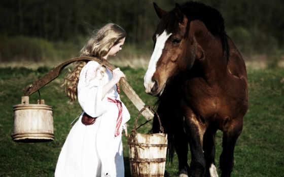 horse, коллекция