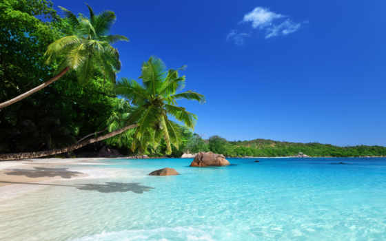 пляж, пальмы, тропики Фон № 80938 разрешение 2560x1600