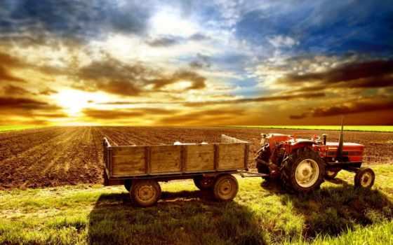 сельское, ферма, трактор, поле, пашня,