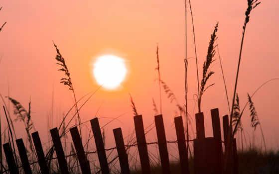 sun, утро, рассвет, фотографий, трава, деревня, река,