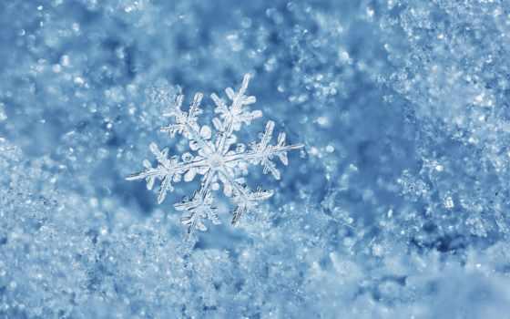 очарование, макро, снежинка
