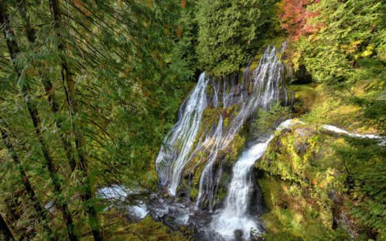 falls, waterfalls, водопад, заводь, дек, картинка, panther, природа, закат, лес,