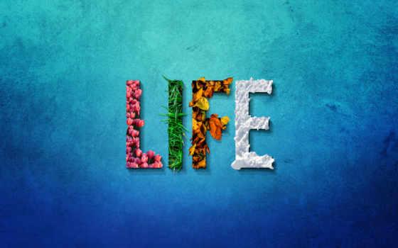 life, internations, весна, pixabay, seasons, seabeastgear, expat,