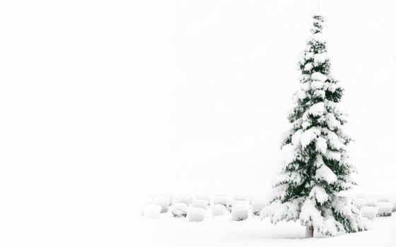 поздравления, рождеством, рождественские