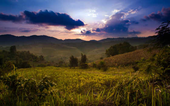 rural, таиланд, keman, ipad, янв, deviantart,