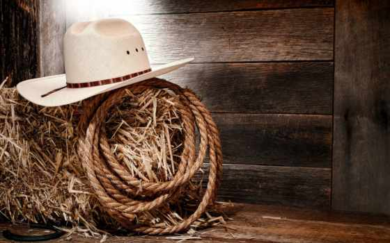 ковбой, boots, шляпа, hats, free, завтрак,