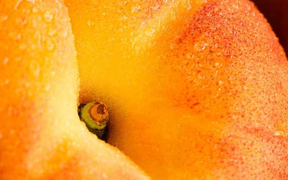 персик, еда, сочный, max, макро, фрукт, похожие, персика, напитки, сочного, назад, категорию, выбрать,