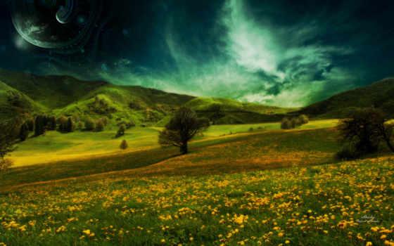 summer, природа, трава Фон № 123865 разрешение 1920x1200