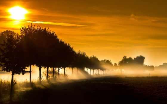 природа, закат, landscape, пейзажи -, солнечные, rays, trees, пустыня, process, стан, sb,