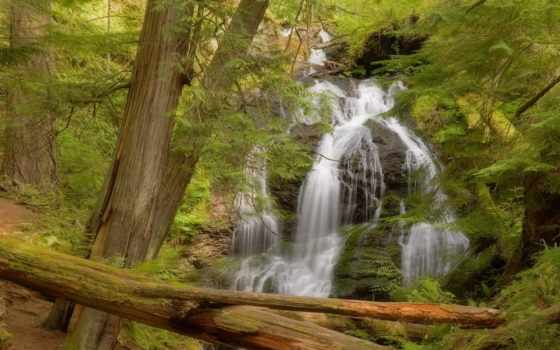водопад, ta, quanh, cánh, summer, лес, свіжість, тео, густой, nhiên,