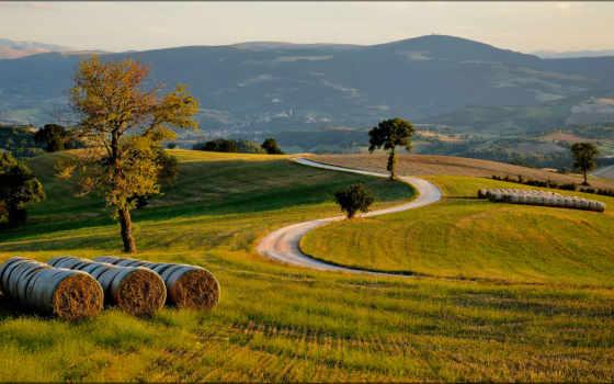 картинка, уже, загружено, коллекция, лучшая, marche, trees, город, горы,
