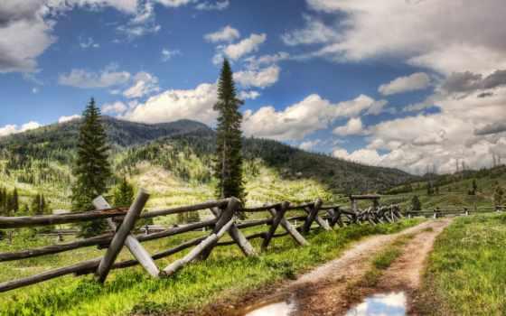природа, красивые, pozadine, trees, slike, пейзажи -, леса, priroda, desktop, дороги,